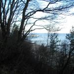 Steilufer in Zempin