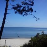 Ein Strand zum Träumen
