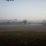Noch wabern Nebelschleier...
