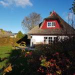 """Ferienhaus """"Findling"""" in herbstlichen Farben"""