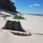 vom Sand geschliffen